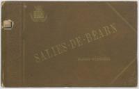 Salies-de-Béarn (Basses-Pyrénées) : bains chlorurés sodiques bromo-iodurés ..: . indications é}erapeutiques, notice historique et descriptive